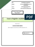 Support de Cours Algèbre Multilinéaire (Recovered)