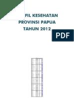 33 Profil Kes.prov.Papua 2012 3