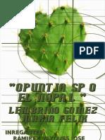 EL NOPAL, OPUNTIA SP