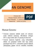 Kelompok 1 - Human Genome