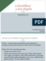 Isolasi Dan Identifikasi Salmonella Dan Shigella