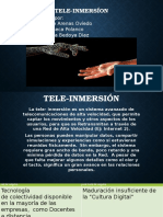 Teleinmersión(2)