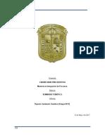 REPORTE SEMINARIO 5 MAYO 2017.docx