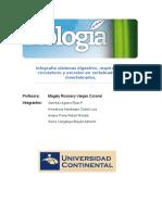 Infografía sistemas digestivo