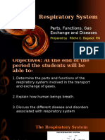 Respiratory System Ppt