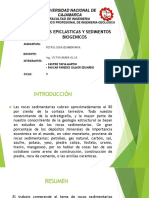 5.3..EPICLASTICAS-Y-SED.-BIOGENICOS.pdf
