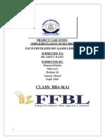Final Ffbl (1)