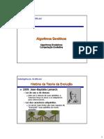 Aula09_AlgoritmosGeneticos_antiga.pdf