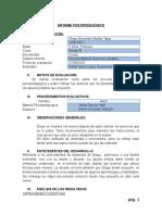 Informe Cuali Diego Badilla
