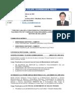 Curriculum Vitae-dominguez Malo Victor Felipe