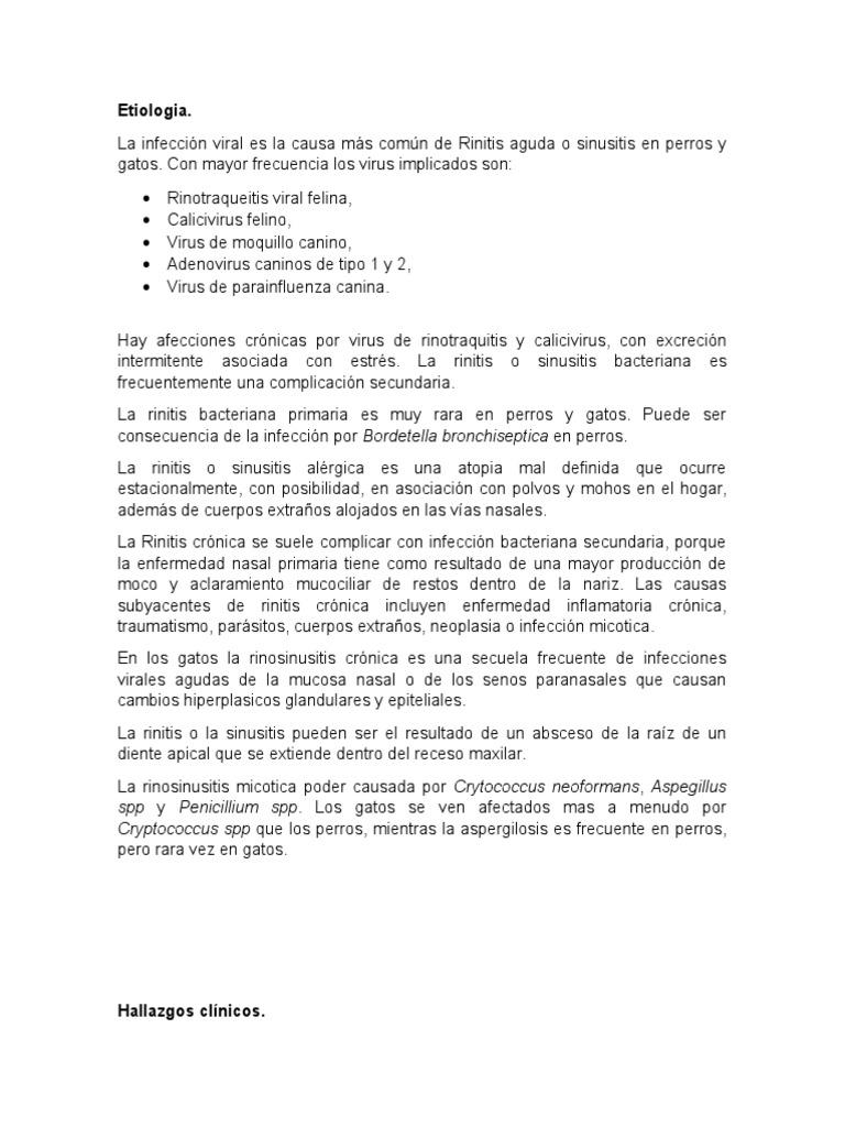 Rinitis bacteriana en perros pdf