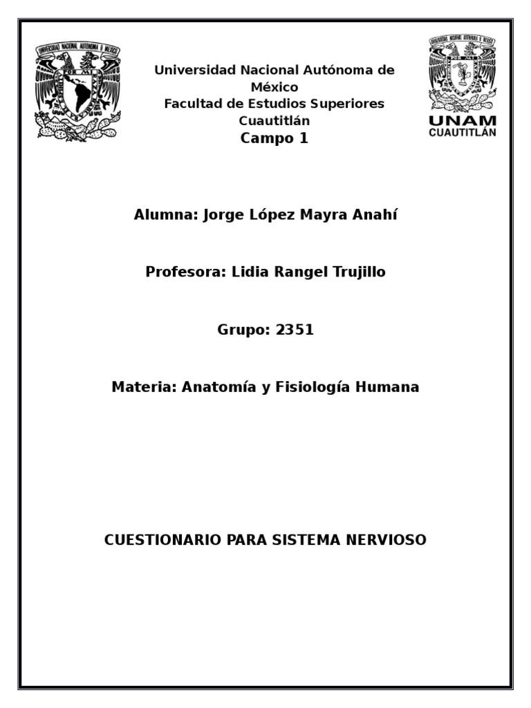 Dorable Anatomía Y Fisiología Humana Cuestionario Sistema Endocrino ...