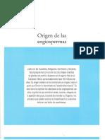 Tema XII. Origen de Las Angiospermas