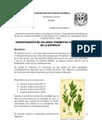 """Cromatografía en Columna """"Pigmentos Clorofílicos de La Espinaca"""""""