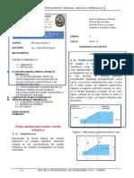 Resumen Ejecutivo en Español-01