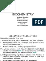 Nucleotide Metabolism PP