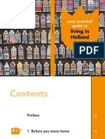 Your Practical Guide to Living in Holland Copy