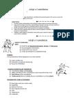 adoptaconstellation-directions docx