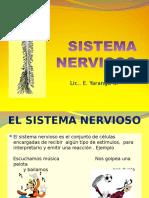 El Sistema Nervioso Sexto Grado