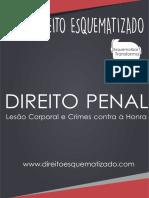 PENAL ESQUEMATIZADO.pdf