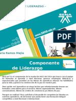 5. Presentacion Snl Pptx