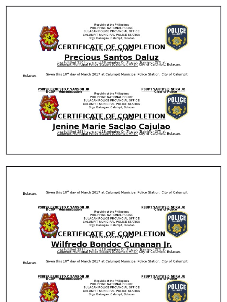 agency certificate philippines local government