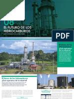 EL FUTURO DE LOS HIDROCARBUROS.pdf