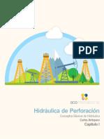 Perfo hidraulica.pdf