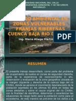 riesgoambientalenzonasvulnerablesfranjasribereascuencabajariochillon-090712212928-phpapp01