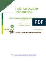 Plan Táctico Q-P 2017.pdf