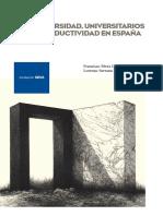 DE_2012_universidad_universitarios.pdf