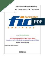 Apostila biologia celular e molecular - prática e teórica - 2012.pdf
