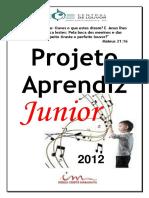 Projeto Aprendiz Junior