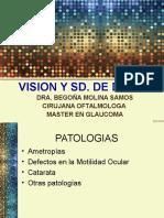 VISION Y SD DE DOWN