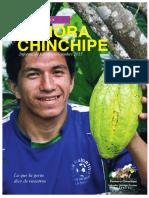 RENDICIÓN DE CUENTAS ZAMORA CHINCHIPE 2015
