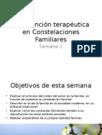 Constelaciones Familiares. Introducción Familia