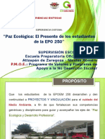 Paz Ecologica Epoem 250 Bg028