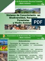 Bolivia o Reform as i Stem As