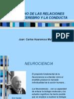 Cerebro y Conducta Corregido (1)