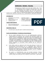 Inspeccion Tecnico Policial