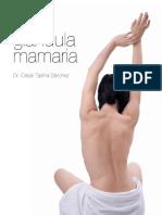 glandula mamaria antomia.pdf