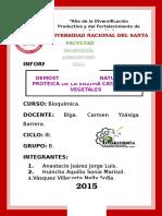 INFORME-03-Estructura.docx