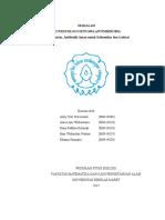 Profil Eritromisin