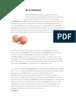 importancia de la albúmina.docx