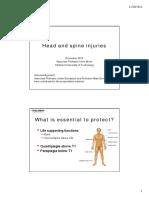 Head_spine_KB31.pdf