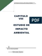 Capitulo Viii .- Estudio de Impacto Ambiental