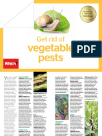 Get Rid of Vegetable Pests Online