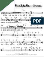 blackbird.pdf