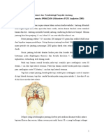Anatomi-dan-Patofisiologi-Jantung.doc