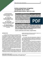 Hemidesmosoma - Epidermólisis bullosa